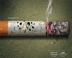 No Smoking Campaign Picture Gallery